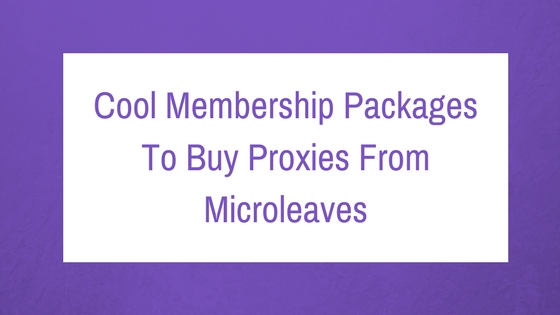 Cool Membership Packages To Buy Proxies From Microleaves