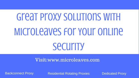 Great proxy solutions with Microleaves for Your online security