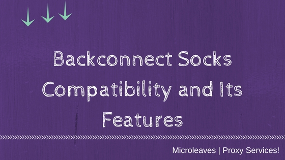 Backconnect Socks features