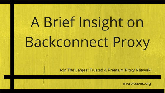 A Brief Insight on Backconnect Proxy