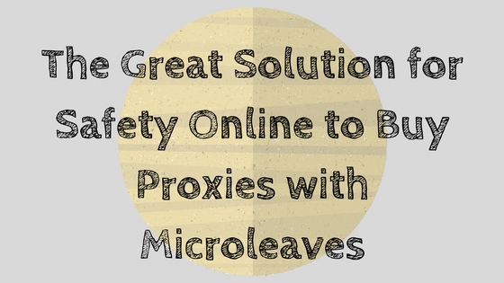 The Great Solution for Safety Online to Buy Proxies with Microleaves