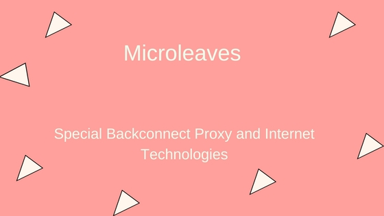 Application of special backconnect proxy