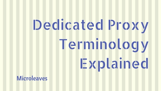 Dedicated Proxy Terminology Explained